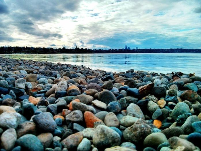 Lake Washington Pebbles at Seward Park